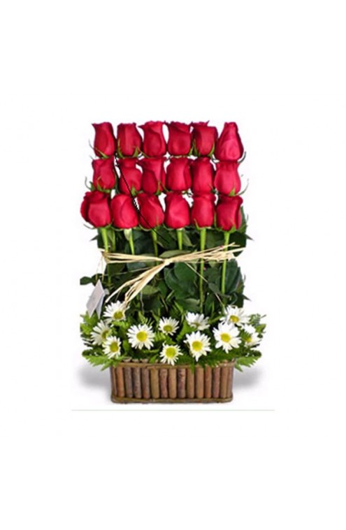 18 rosas rojas en 3 lineas #35