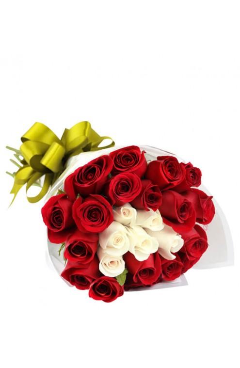 Ramo con 24 Rosas Rojas y Blancas # 1804