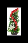 Arreglo Floral de Rosas Rojas #660