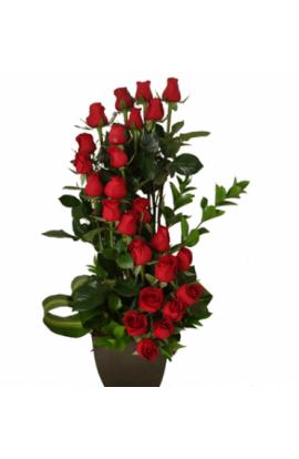 Espiral Doble con 24 Rosas Rojas # 18